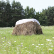 Haystack — Stock Photo #27248515
