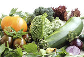 Ripe fresh vegetables close up — Stock Photo
