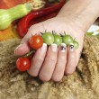 Cherry tomatoes and a woman hand — Stock Photo
