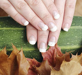 French manicured nails — Stock Photo