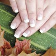 Stock Photo: French manicured nails
