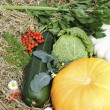 Stock Photo: Autumn vegetables