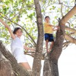 Stock Photo: Children on tree