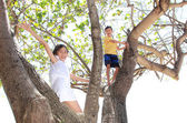 Children on the tree — Stock Photo