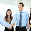 Business shaking hands — Stock Photo #17998995