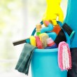 Male cleaning service — Stock Photo #19846633