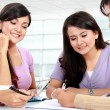 Royalty-Free Stock Photo: Group of student studying together