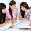 Group of student studying together — Stock Photo #19849055