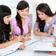 Group of student studying together — Stock Photo