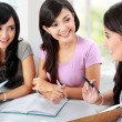 Group of student studying together — Foto de Stock