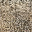 Stock Photo: Copper old plate texture