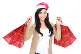 Young woman in santa hat with shopping bag — Stock fotografie