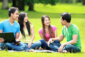 Group of young student using laptop outdoor — Stock Photo