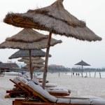 Sun loungers on a tropical beach — Stock Photo #12446501