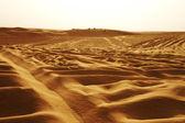 Jeeps on the dunes of Sahara desert — Stock Photo