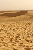 Sand dunes in the Sahara desert of Africa — Stock Photo