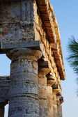 The fronton of the greek temple of Segesta in Sicily — Stock Photo