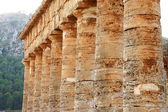 The colonnade of the greek temple of Segesta in Sicily — 图库照片