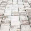 Stock Photo: Wet foot path texture with stone plates