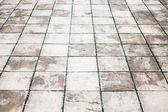 Texture chemin pied humide avec des plaques de pierre — Photo