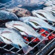 Fired fish on the stove — Stock Photo