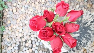 Spraying Water To Red Rose Bouquet — Stock Video