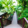 Wood pathway along a resort — Stock Photo