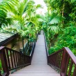 Wood pathway along a resort — Foto Stock