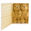 Bear doll in Basketwork — Stock Photo