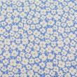 White floral pattern. Flowers fabric — Stock Photo