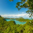 AngThong Marine National Park Viewpoint,Samui,Thailand — Stock Photo