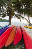 Kayaks under coconut palms — Stock Photo