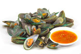 Asian green mussel — Stock Photo