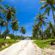 Road on island — Stock Photo
