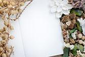 花香干燥花框架 — 图库照片