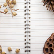 Dry flowers frame on Spiral Bound Notebook — Stock Photo