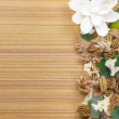 Stock Photo: Potpourri-Dry flowers frame