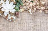 попурри, сухие цветы кадр — Стоковое фото