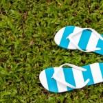 Flip flops — Stock Photo #47961025