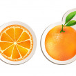 Juicy orange with slice — Stock Vector