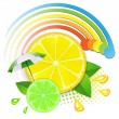 Slices lemon and lime — Stock Vector