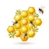 Abeilles, nid d'abeilles et fleurs isolés sur blanc — Vecteur