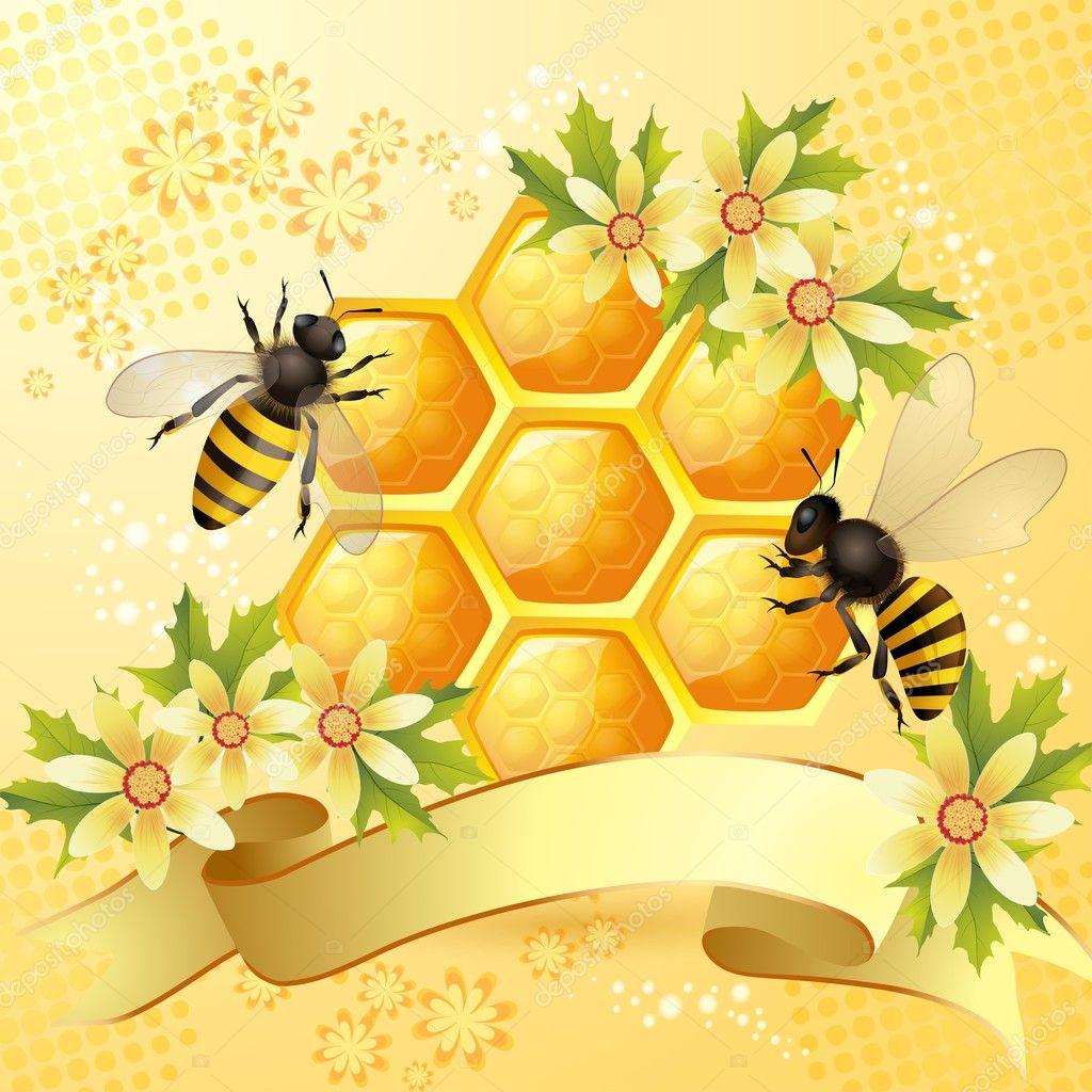пчелы и соты картинки