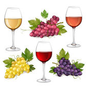 Different varieties of grapes and glasses of wine — Stock Vector