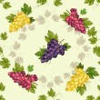 Seamless pattern with grapes and vine. — Stock Vector