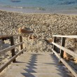 Stock Photo: Stairway to beach