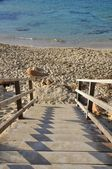 Stairway to the beach — Stock Photo