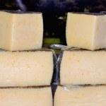 Manchego Cheese — Stock Photo