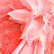 Detail of pink dress — Stock Photo #12429315