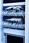 Network rack — Stock Photo